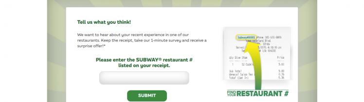 subway customer survey logo